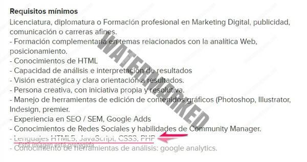 guia-community-manager-oferta-de-empleo-html